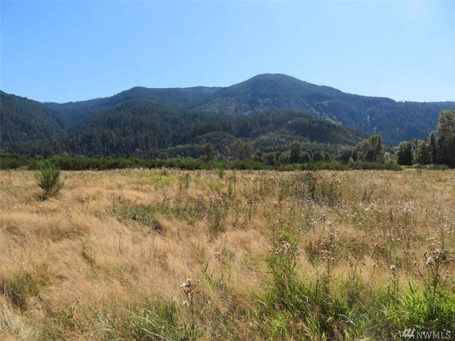 295 River Ranch Rd, Randle, WA 98377 (#1511754) :: Better Properties Lacey
