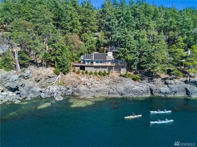 681 Smugglers Cove Rd, San Juan Island, WA 98250 (#1512155) :: Canterwood Real Estate Team