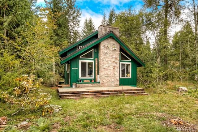 114 Mountain View Dr, Ashford, WA 98304 (#1513305) :: Record Real Estate