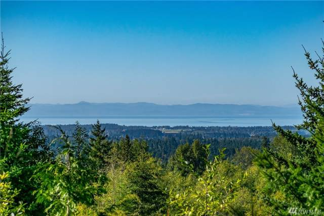 1-Lot Haven Heights, Sequim, WA 98382 (#1513522) :: Ben Kinney Real Estate Team