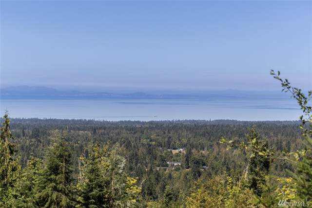 596 Watershed Rd, Port Angeles, WA 98362 (#1513719) :: Better Properties Lacey