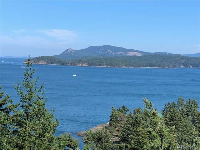 283 Upper Dr, San Juan Island, WA 98250 (#1513927) :: Keller Williams Western Realty
