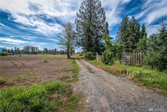 2753 E Badger Rd, Everson, WA 98247 (#1513984) :: Crutcher Dennis - My Puget Sound Homes