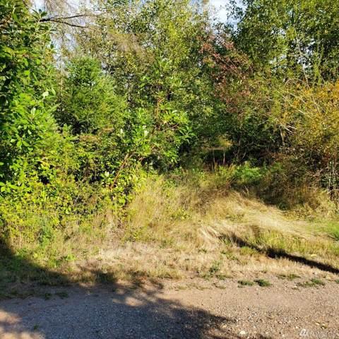0 E Mcmickin Rd, Shelton, WA 98584 (#1514171) :: KW North Seattle
