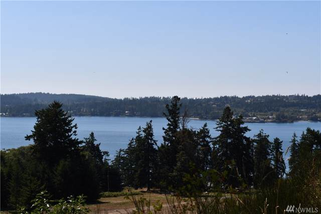 0 Covey Run Rd, San Juan Island, WA 98250 (#1514355) :: Chris Cross Real Estate Group