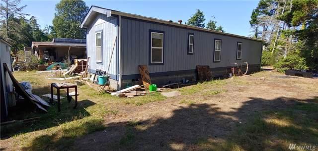 1716 250th Lane, Ocean Park, WA 98640 (#1515336) :: Canterwood Real Estate Team
