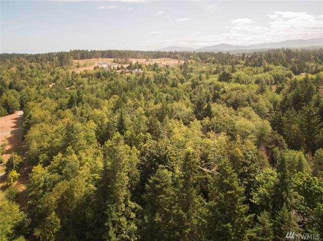 999 Pristine Lot 3 Lane, Port Angeles, WA 98362 (#1515579) :: Lucas Pinto Real Estate Group