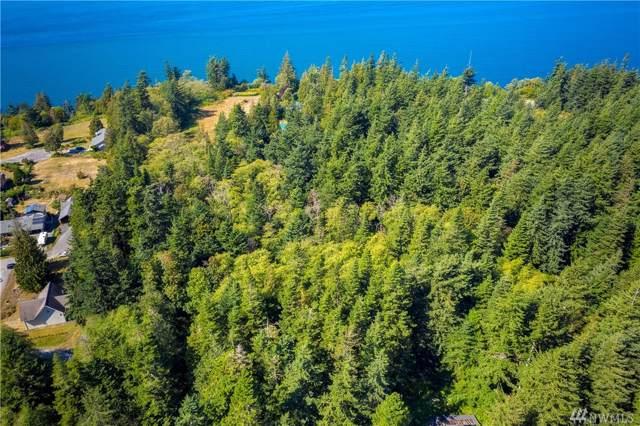 1 West Shore Dr, Lummi Island, WA 98262 (#1515911) :: Chris Cross Real Estate Group