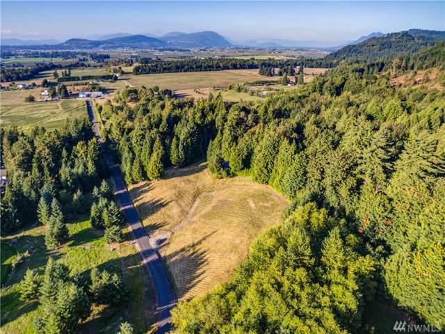 8780 Vedder View Lane, Sumas, WA 98295 (#1515942) :: Hauer Home Team