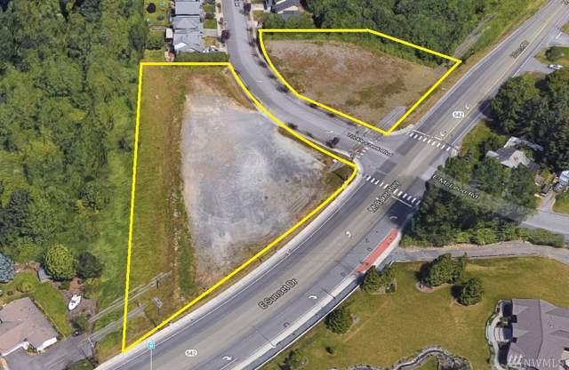 3001 E Sunset Dr, Bellingham, WA 98226 (#1515950) :: Ben Kinney Real Estate Team