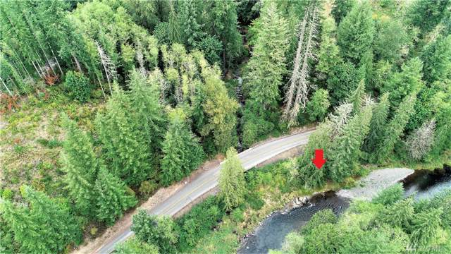 0 Kalama River Road, Kalama, WA 98625 (#1515999) :: Canterwood Real Estate Team