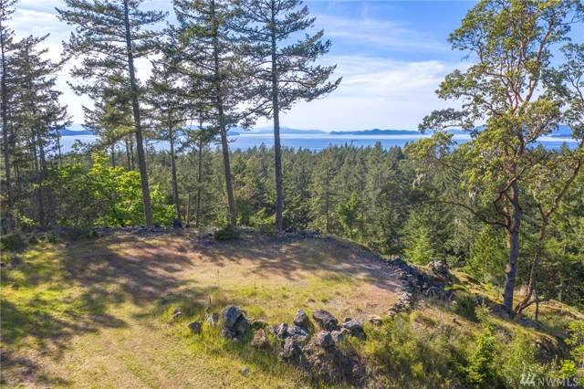 550 Dancing Deer Dr, Orcas Island, WA 98245 (#1516818) :: Liv Real Estate Group