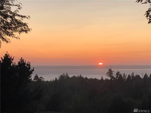 657 Majestic View Lane, Camano Island, WA 98282 (#1517162) :: Mosaic Home Group