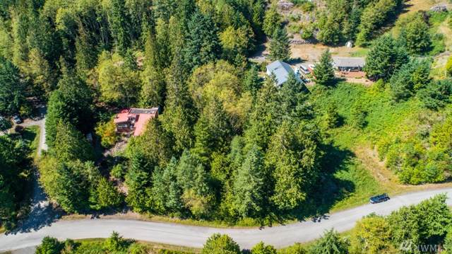 0 Honeymoon Lane, Port Townsend, WA 98368 (#1517541) :: KW North Seattle
