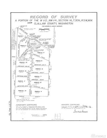 0-Lot 12 James Page Rd, Port Angeles, WA 98362 (#1517664) :: Alchemy Real Estate