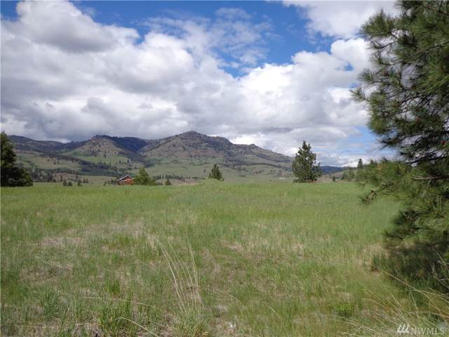 0-Lot D Hwy 21 N, Republic, WA 99166 (#1517869) :: Liv Real Estate Group