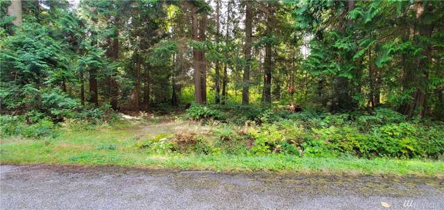 0-Lot 5 Deer Rd, Point Roberts, WA 98281 (#1517911) :: Ben Kinney Real Estate Team