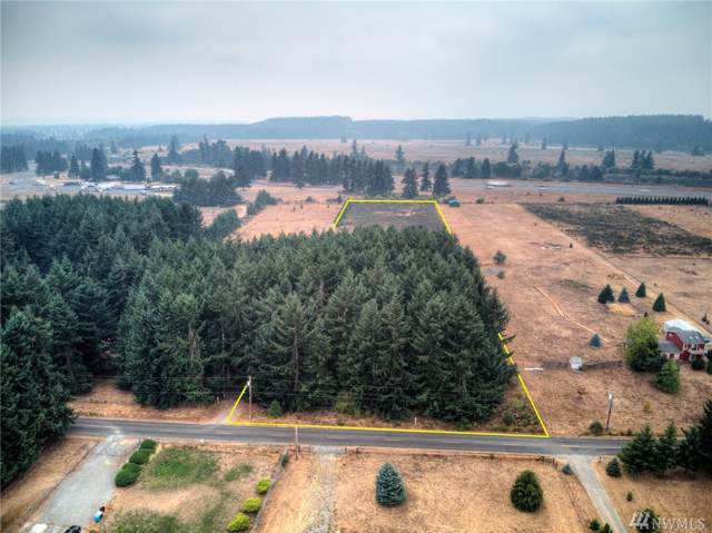 0 Leitner Rd SW, Rochester, WA 98579 (#1518857) :: Chris Cross Real Estate Group
