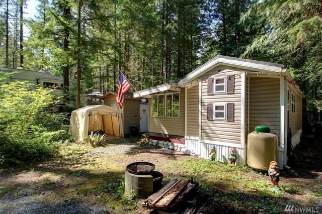 137-1 Jasper Trail, Deming, WA 98244 (#1519094) :: Hauer Home Team