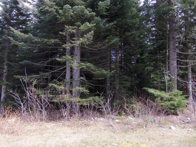 0-Lot 15 Arlberg Place, Snoqualmie Pass, WA 98068 (#1519249) :: Mosaic Home Group