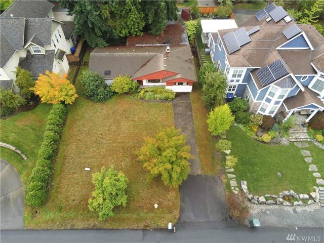 1633 105th Ave SE, Bellevue, WA 98004 (#1519455) :: Tribeca NW Real Estate