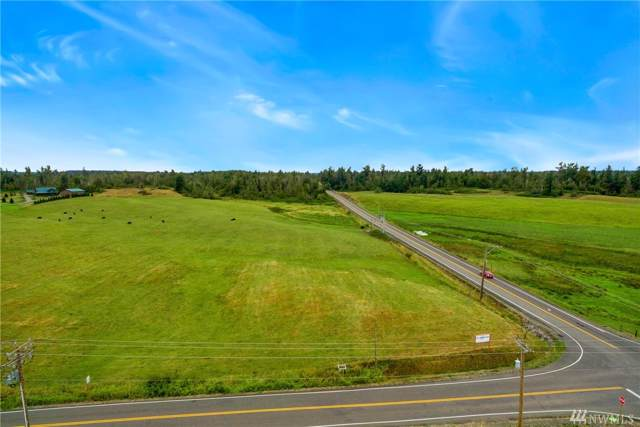 0 Hampton Rd, Everson, WA 98247 (#1519833) :: Record Real Estate
