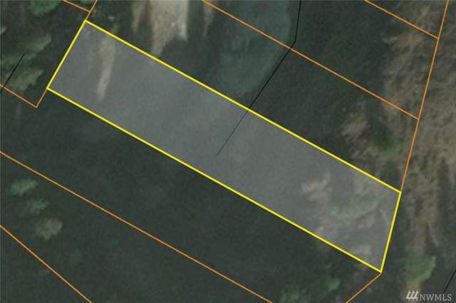 39381 Vantage Point N, Seven Bays, WA 99122 (#1520058) :: Northern Key Team