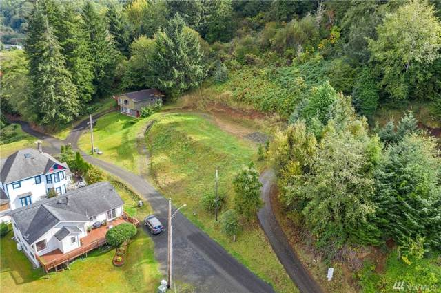 382 Paynes Alley, South Bend, WA 98586 (#1520281) :: NW Homeseekers