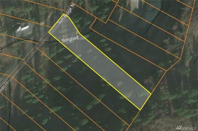 39340 Sun Ridge N, Seven Bays, WA 99122 (#1520951) :: Northern Key Team