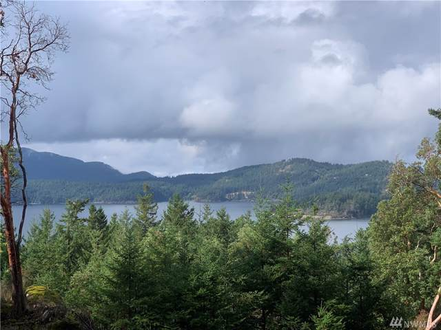0-XX Gafford Lane, Orcas Island, WA 98245 (#1521019) :: Ben Kinney Real Estate Team