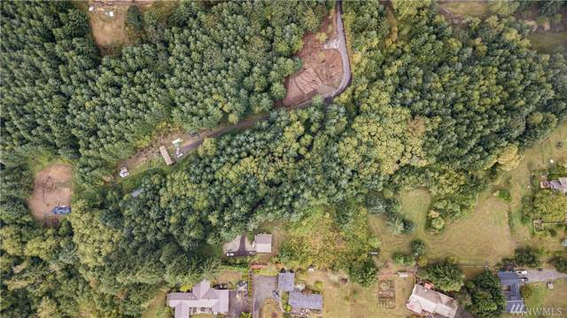 253 Harlequin Ct, Woodland, WA 98674 (#1522065) :: Ben Kinney Real Estate Team