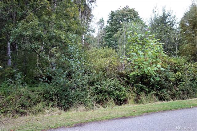 5-Area 2 Rainier Lane Lot 5, Port Ludlow, WA 98365 (#1522125) :: Better Properties Lacey