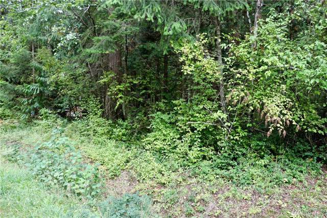 0-XXX Moose Trail, Point Roberts, WA 98281 (#1523038) :: Mosaic Home Group