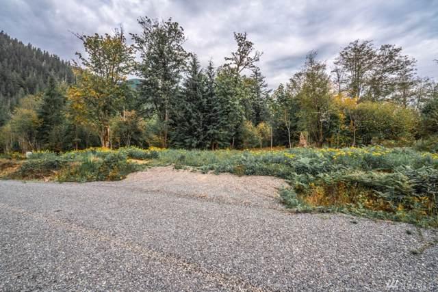 1 Tessa Lane, Rockport, WA 98283 (#1523300) :: Mike & Sandi Nelson Real Estate