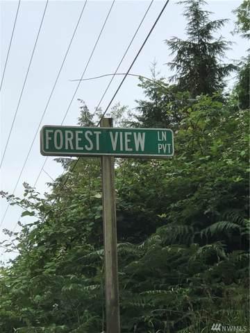 23 Forest View Lane Lane, Greenbank, WA 98259 (#1523358) :: Center Point Realty LLC