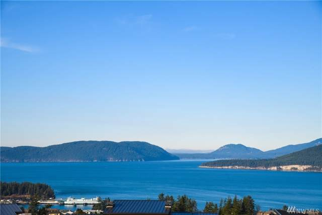 3921 Rock Ridge Pkwy, Anacortes, WA 98221 (#1523541) :: Mosaic Home Group