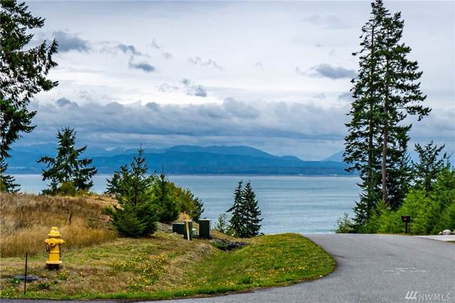 1598 View Haven Dr, Oak Harbor, WA 98277 (#1523609) :: Canterwood Real Estate Team