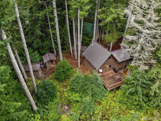 87611 NE Stevens Pass Hwy, Skykomish, WA 98288 (#1523939) :: Mosaic Home Group