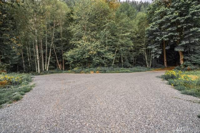 9 Tessa Lane, Rockport, WA 98283 (#1524103) :: Mike & Sandi Nelson Real Estate