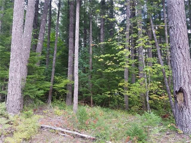 0-Lot 10 Cowlitz View Dr, Packwood, WA 98361 (#1524547) :: The Kendra Todd Group at Keller Williams