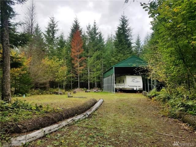 155 Mount Rainier Dr, Packwood, WA 98361 (#1524592) :: Chris Cross Real Estate Group