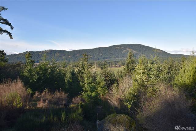 298 Mountain Crest Dr Lot 2, Orcas Island, WA 98245 (MLS #1524595) :: Lucido Global Portland Vancouver