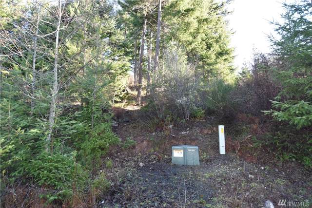298 Mountain Crest Dr #4, Orcas Island, WA 98245 (#1524736) :: Better Homes and Gardens Real Estate McKenzie Group