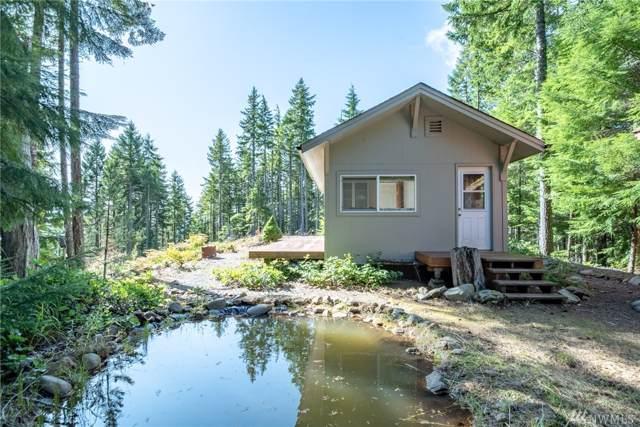 2331 N Dow Mountain Rd, Hoodsport, WA 98548 (#1524740) :: Chris Cross Real Estate Group