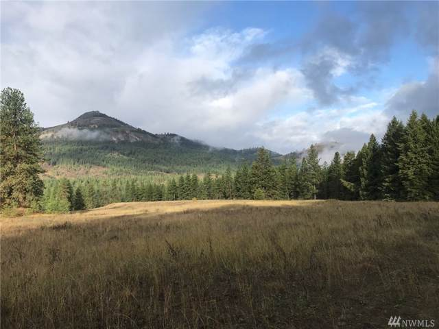 0-Tract 1 Tonasket Creek Rd, Curlew, WA 99118 (MLS #1525062) :: Nick McLean Real Estate Group