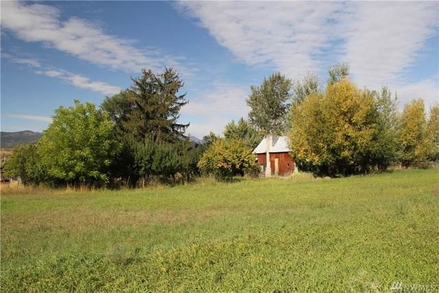 23 Aspen Lane Rd, Winthrop, WA 98862 (#1525563) :: Better Properties Lacey