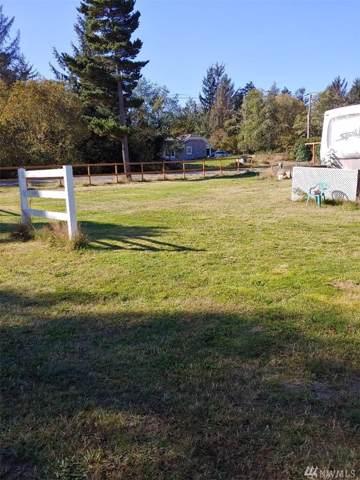 29005 S Lane, Ocean Park, WA 98640 (#1526093) :: Ben Kinney Real Estate Team