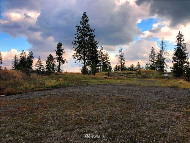 31050 E Ruffed Grouse Dr, Davenport, WA 99122 (MLS #1526628) :: Community Real Estate Group