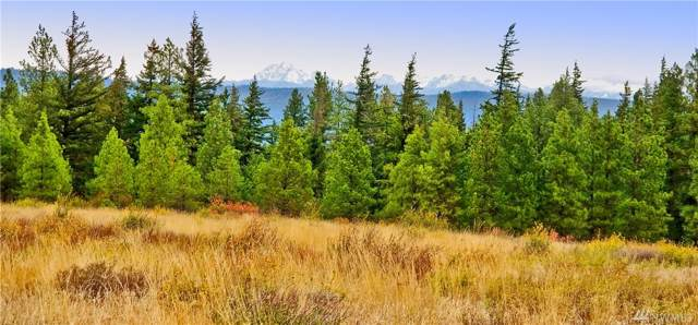 0-Lot27&28 Stag Rd, Cle Elum, WA 98922 (MLS #1526810) :: Nick McLean Real Estate Group