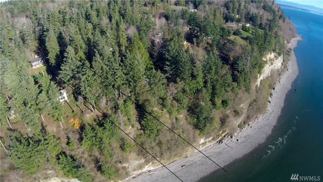 2098 Gull Way, Camano Island, WA 98282 (#1526962) :: Mike & Sandi Nelson Real Estate